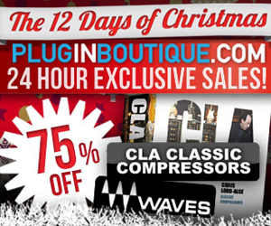 300x250--12-days-of-xmas-waves-cla