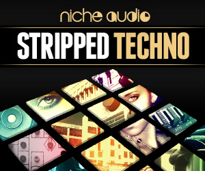 Niche-stripped-techno-300-x-250