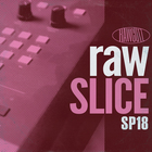 Sp18_raw_slice