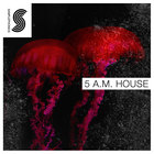 Sp_5am_house_1000x1000
