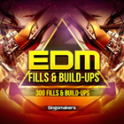 Edm_fills___buildups_1000x1000