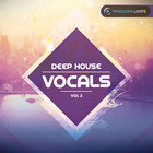 Deep-house-vocals-vol-2-1000
