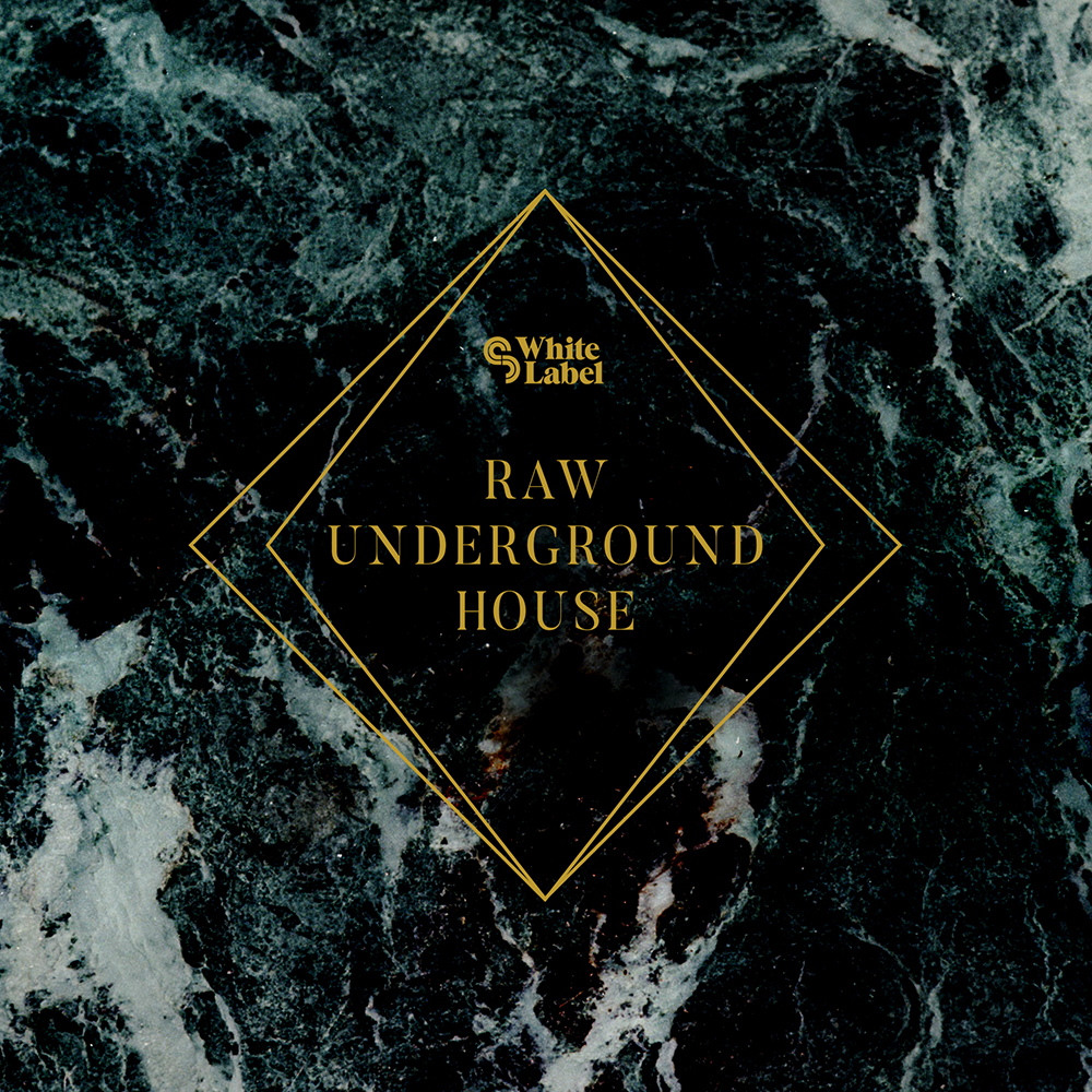 Under Ground House Sample Magic Sm White Label Raw Underground House Tech House