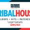 Robbie rivera   tribal house bass   drum loops review