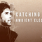 Catching flies review