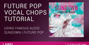 Lm labels famousaudio futurepopvocalchops