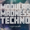 Modularmadness review
