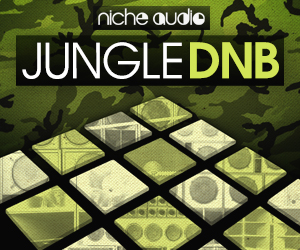 Niche djungle dnb 300 x 250