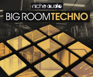 Niche big room techno 300 x 250