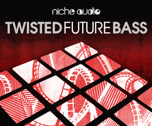 Niche twisted future bass 300 x 250