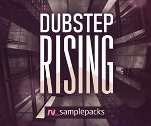 300 x 250 rv dubstep rising