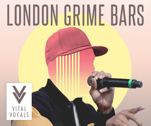 Lm vital vocals london grime bars 300 x 250