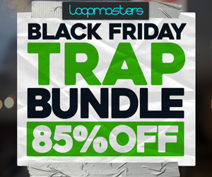 300 x 250 lm black friday trap bundle