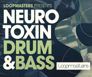 300 x 250 drum and bass samples  neuro bass loops  dnb drums and fills  drum   bass synths and fx