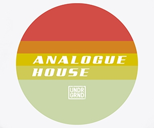 Loopmasters analogue house 300x250