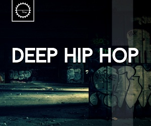 Loopmasters 6 deep hip hop east coast west coast modern hip hop drums bass ambience fx beats drum shots kicks heavy bass  depp vibes 300 x 250
