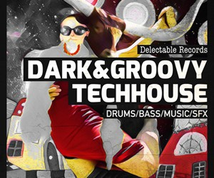 Loopmasters dark and groovy techhouse 300
