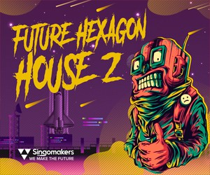 Loopmasters singomakers future hexagon house vol 2 300 250
