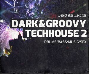 Dark groovy techhouse 2 300