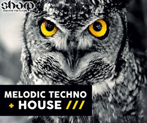 Loopmasters sharp   melodic techno   house banner 250