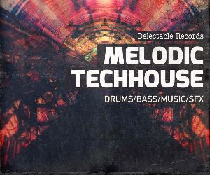 Loopmasters melodic techhouse 300 samples loops web