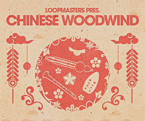Loopmasters cw banner 300