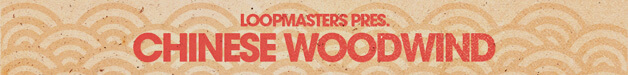 Loopmasters cw banner 628