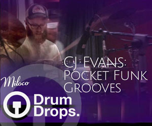 Loopmasters drumdrops pocket funk drum samples multitracks 300x250 web