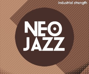 Loopmasters 5 nj jazz neo jazz nu disco nu soul lounge downtempo chillout construction kits drums horns bass 300 x 250