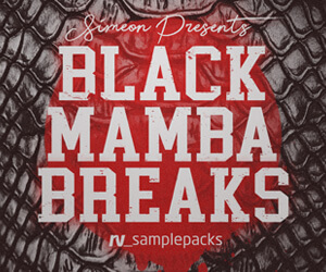 Loopmasters rv black mamba breaks 300 x 250