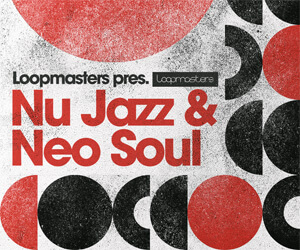 Loopmasters nj banner 300