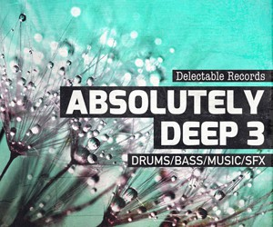 Loopmasters absolutely deep 03 300