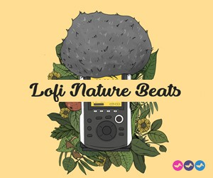 Loopmasters lofi nature beats urban samples dusty grooves lnb 300 x 250