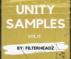 Loopmasters unity records samples loops filterheadz sounds 300x250 web