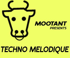 Loopmasters techno melodique v2 300x250