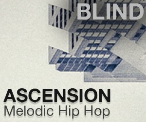Loopmasters ascension 300x250