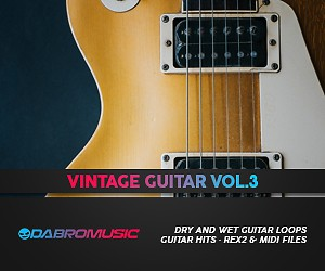 Loopmasters dabromusic vintage guitar vol3 300 250
