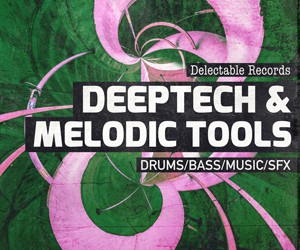 Loopmasters deeptechandmelodictools 300