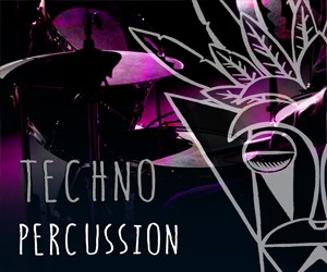 Loopmasters mfx techno percussion 300x250