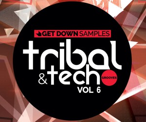 Loopmasters getdown samplesvol6 lm