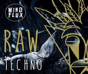Loopmasters mfx raw techno 300x250