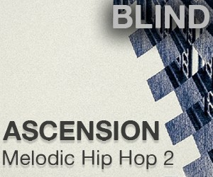 Loopmasters asension2 300x250