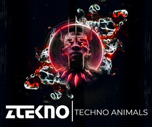 Loopmasters ztekno techno animals underground techno royalty free sounds ztekno samples royalty free 300x250