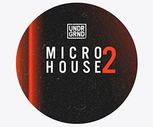 Loopmasters micro house 2 300x250