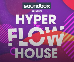 Loopmasters 300 x 250 hyper flow house
