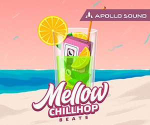 Loopmasters mellow chillhop beats 300%d1%85250