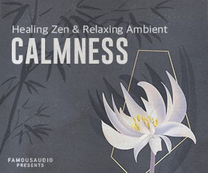 Loopmasters fa cn relaxing ambient zen 300x250