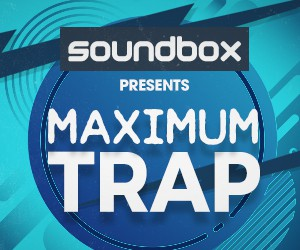 Loopmasters 300 x 250 maximum trap