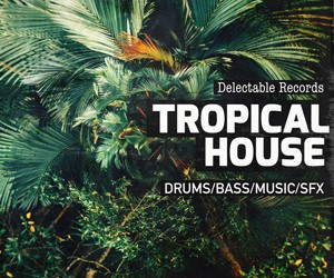 Loopmasters delectable records tropical house 300