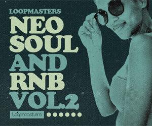 Loopmasters ns2 banner 300